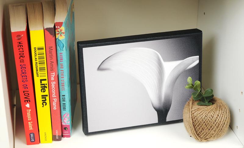 Mini Canvas A Unique Alternative To Photo Frames