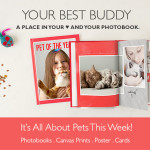 photobook for pets