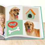 Homepage-Banner_dog