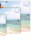 LPs-size-Landscape_v3