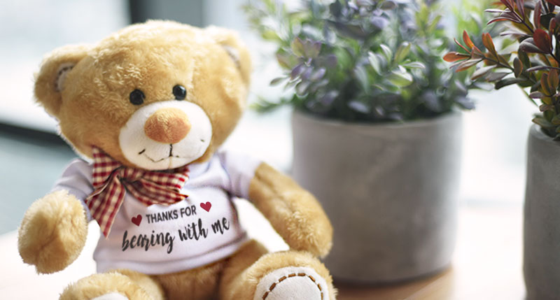 Personalisable Teddy Bear.
